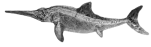 Ichthyosaur PNG Free Download PNG Clip art