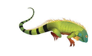 Iguana PNG Pic PNG clipart