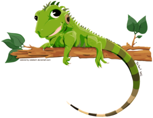 Iguana PNG Transparent Image PNG Clip art