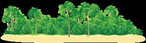 Island PNG Photos PNG Clip art