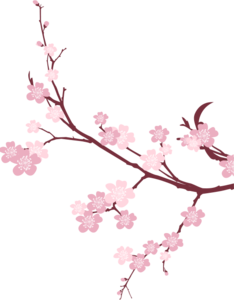 Japanese Flowering Cherry PNG Picture PNG Clip art