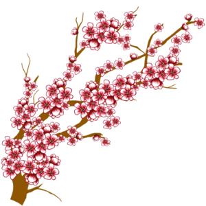 Japanese Flowering Cherry Transparent Background PNG Clip art