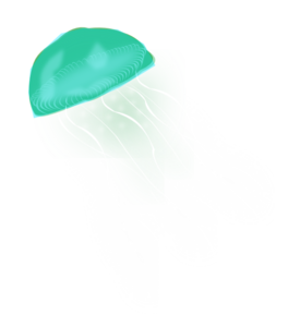 Jellyfish PNG Picture PNG Clip art