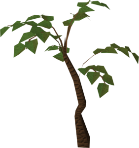 Jungle Tree PNG HD PNG Clip art