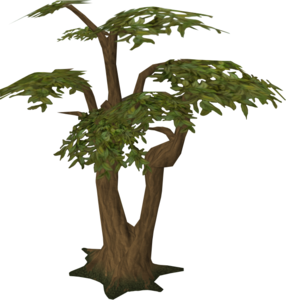 Jungle Tree PNG Transparent Picture PNG Clip art