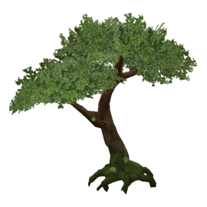 Jungle Tree PNG Transparent PNG Clip art