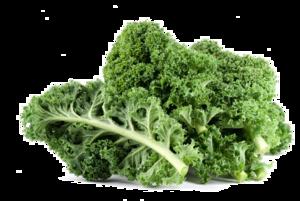 Kale PNG File PNG Clip art