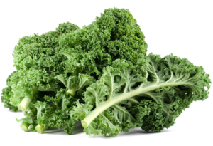 Kale PNG Free Download PNG Clip art