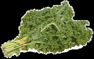 Kale PNG Image PNG Clip art