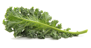 Kale PNG Pic PNG Clip art