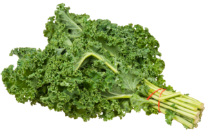 Kale PNG Transparent Image PNG Clip art