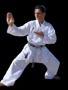 Karate PNG Clipart PNG Clip art