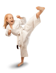Karate PNG File PNG icon