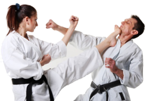 Karate PNG Free Download PNG Clip art