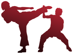 Karate PNG HD PNG Clip art