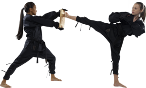 Karate PNG Pic PNG Clip art