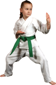 Karate PNG Picture PNG Clip art