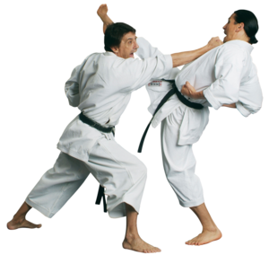 Karate PNG Transparent Picture PNG Clip art