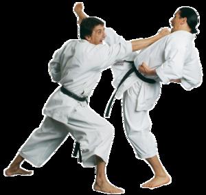 Karate PNG Transparent Picture PNG Clip art