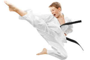 Karate Transparent Background PNG Clip art