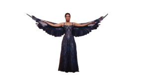 Katniss Everdeen Transparent Background PNG Clip art