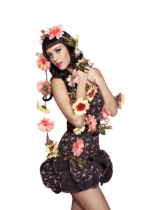 Katy Perry PNG Transparent Picture PNG Clip art
