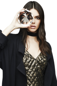 Kendall Jenner PNG Free Download PNG Clip art