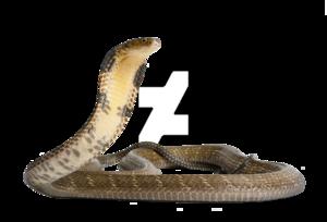 King Cobra PNG Free Download PNG Clip art