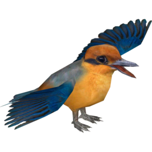 Kingfisher PNG Transparent Image PNG Clip art