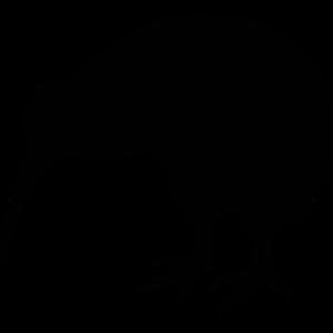 Kiwi Bird PNG Image PNG Clip art