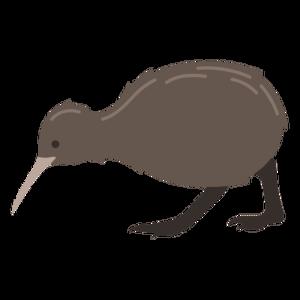 Kiwi Bird PNG Photos PNG Clip art