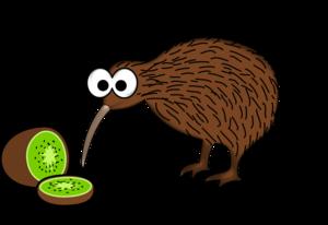 Kiwi Bird PNG Clip art
