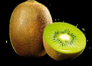 Kiwi Fruit PNG PNG Clip art
