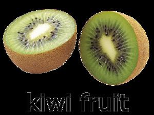 Kiwi Fruit PNG Clip art