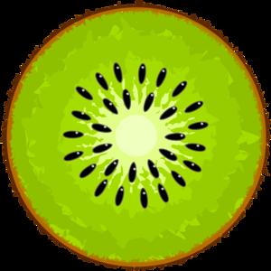 Kiwi Slice PNG Image PNG Clip art