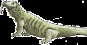 Komodo Dragon PNG File PNG Clip art