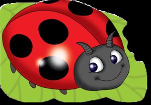 Ladybird PNG HD PNG Clip art