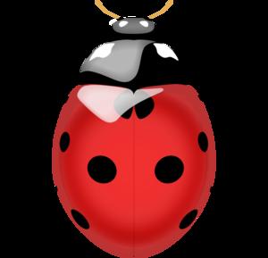 Ladybird PNG Image PNG Clip art