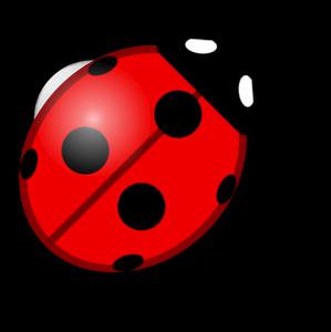 Ladybird PNG Photos PNG Clip art