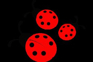 Ladybird PNG Transparent Picture PNG Clip art