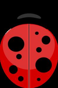 Ladybird Transparent Background PNG Clip art