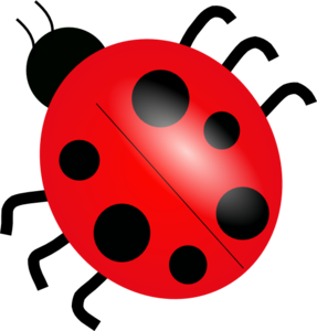 Ladybug Cartoon PNG PNG Clip art