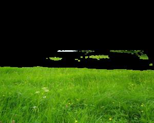 Landscape Transparent PNG PNG Clip art