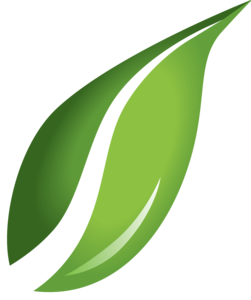 Leaf Transparent Background PNG icon