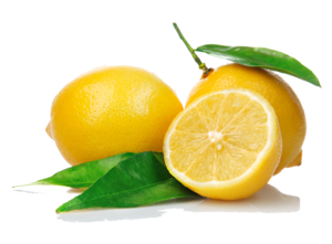 Lemon PNG Pic Clip art