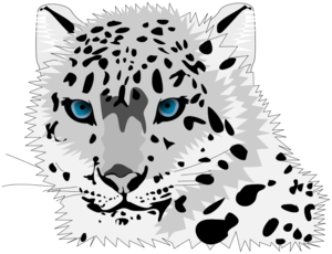 Leopard PNG Free Download PNG Clip art