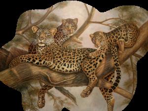 Leopard PNG Pic PNG Clip art