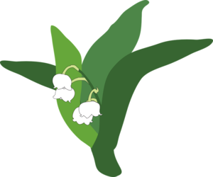 Lily of The Valley PNG Pic PNG Clip art