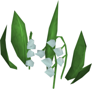 Lily of The Valley Transparent PNG PNG Clip art