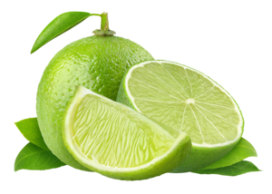 Lime PNG HD PNG Clip art